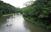 Fountain in a pond of the park  — Stockfoto