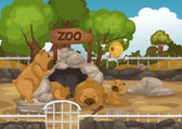 Zoo and bear vector — Stock Vector