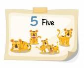 Number five tiger vector — Stock Vector