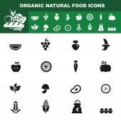 Organic natural food icon vector — Stock Vector