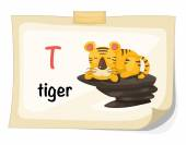 Animal alphabet letter T for tiger illustration vector — Stock Vector