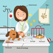 The Idea of Female Veterinarian Curing the Dog — Stock vektor