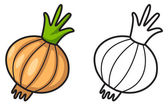 Colorful and black and white onion for coloring book — Stockvektor