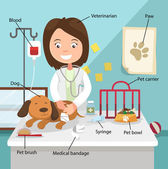 The Idea of Female Veterinarian Curing the Dog with Related Voca — Stock Vector