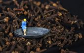 Tiny woman sitting in a boat floating in a clove sea — Stock Photo
