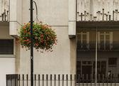 Vase of red flowers hanging in London  — Stock fotografie