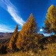 Autumn landscape in Aosta Valley 15 — Stock Photo #57499743