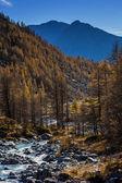 Autumn landscape in Aosta Valley 3 — Stock Photo