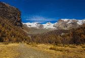 Autumn landscape in Aosta Valley 4 — Stock Photo