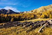 Autumn landscape in Aosta Valley 5 — Stock Photo