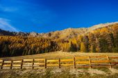 Autumn landscape in Aosta Valley 6 — Stock Photo