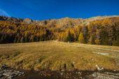 Autumn landscape in Aosta Valley 7 — Stock Photo
