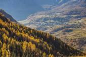 Autumn landscape in Aosta Valley 12 — Stock Photo