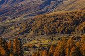 Autumn landscape in Aosta Valley 14 — Stock Photo