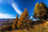 Autumn landscape in Aosta Valley 15 — Stock Photo
