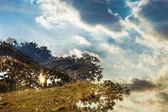 Dubbel exponering av höstens landskap och träd siluett med clo — Stockfoto