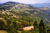 Langhe landscape in Piedmont, Italy — Stock Photo