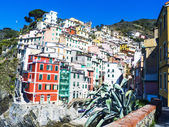 Colorful Cinque Terre glimpse in Liguria, Italy — Stock Photo