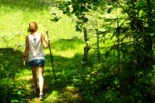 Girl with a stick walks in the wood — Stock Photo