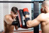 Boxer kicks punching pad — Stock Photo