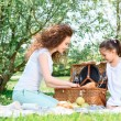 Lovely family picnic in the park — Stock Photo #74596723