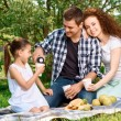 Lovely family picnic in the park — Stock Photo #74596867