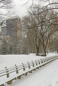 Central Park with snow and Manhattan skyline, New York City — Stock Photo