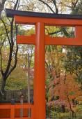 Shimogamo-jinja Shrine (Kamomioya - jinja), Kyoto, Japan — Stock Photo
