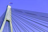 ANZAC Bridge, Sydney, Australia — Stock Photo