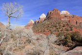 Red rock mountain landscape in Zion National Park, Utah — Stock Photo