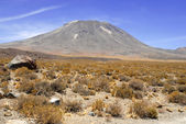 Remote, Barren volcanic landscape of the Atacama Desert, Chile — Stock Photo