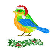 Christmas bird vector — Stock Vector