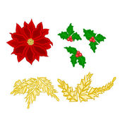 Christmas decoration poinsettia holly and gold leaves vector — Stock Vector