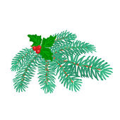 Christmas decoration branch of spruce and holly vector — Stock Vector