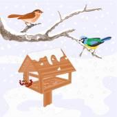 Birds and feeder winter theme vector — Stock Vector