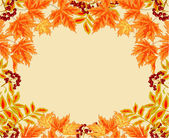 Frame from leaves rowan berry and maple autumn theme vector — Stock Vector