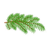 Spruce branch Christmas tree vector illustration — Stock Vector