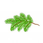 Christmas spruce twig vector — Stock Vector