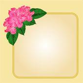 Cornice dorata con il vettore di rododendro — Vettoriale Stock