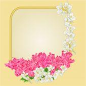 Golden frame rhododendron and jasmine vector — Stock Vector