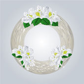 Wreath with white rhododendrons vector — Stock Vector