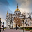 View of the Cathedral of the assumption. Vitebsk. The Republic Of Belarus — Stock Photo #66397429