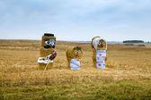 Poppen gemaakt van hooi, permanent naast de weg — Stockfoto
