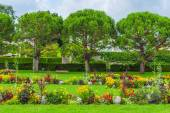 Beautiful summer park with trees and colorful flowers — Stock Photo
