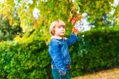 Outdoor portrait of adorable little boy — Stock fotografie