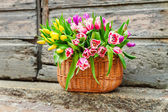 A big basket full of fresh colorful tulips outdoors — Stock fotografie