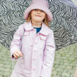 Outdoor portrait of a cute little girl with zebra pattern umbrella, wearing pink rain coat and hat — Stock Photo #65529993
