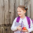 Outdoor portrait of a cute little girl of 7 years old, wearing backpack, holding a book and red apple, standing in front of old wooden wall, back to school concept — Stock Photo #68908267