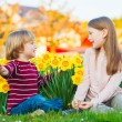 Two cute kids, little boy and his big sister, playing in the park between yellow daffodils flowers at sunset — Stock Photo #70019521
