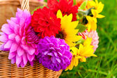 Bright autumn flowers in the basket, outdoors — Stock Photo